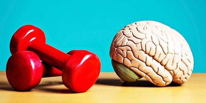 2016_11_Blog_10-Ways-to-Maintain-a-Healthy-Brain.jpg